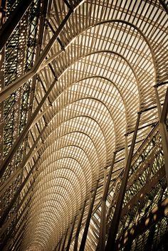 Brookfield Place by Santiago calatrava. Photo by Thomas Hawk