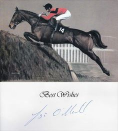 Jonjo-ONeill-autograph-trainer-signed-Horse-Racing-memorabilia-National-Hunt-dawn-run-print-card-champion-hurdler-gold-cup-winner-jockey-hurdle.jpg.opt386x430o0,0s386x430.jpg (386×430)