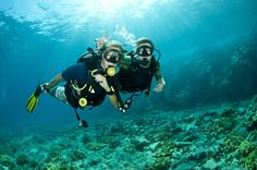 TripBucket - We want You to DREAM BIG! | Dream: Learn to SCUBA Dive