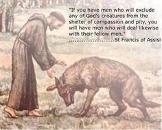 """""""Until one has loved an animal, a part of one's soul remains unawakened."""" ~ Anatole France"""
