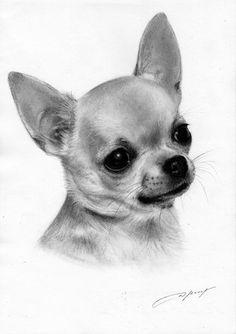 Chihuahua Painting - petdrawing #chihuahua Painting - petdrawings