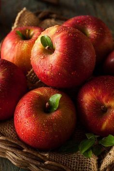and wild cherry fruit extract contain vitamin C and antioxidants which hel. - Obst -Apple and wild cherry fruit extract contain vitamin C and antioxidants which hel. Cherry Fruit, Apple Fruit, Fruit And Veg, Fruits And Vegetables, Fresh Fruit, Dried Fruit, Red Apple, Cherry Apple, Fresh Apples