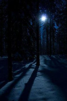 Blue, Gold, Green, and Purple would look beautiful on the king's skin tone if it were as dark as the moonlight in the night sky. Beautiful Moon, Beautiful Places, Beautiful Pictures, Dark Pictures, Images Gif, Winter Night, Winter Moon, Snow Night, Dark Winter