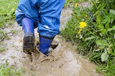 Mud Puddle Images & Stock Pictures. Royalty Free Mud Puddle Photos ...