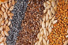 Les graines sont de véritables trésors de santé que l'on gagnerait à manger plus souvent.