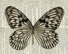 butterfly  brown and cream  printed on  page from by FauxKiss, $10.00