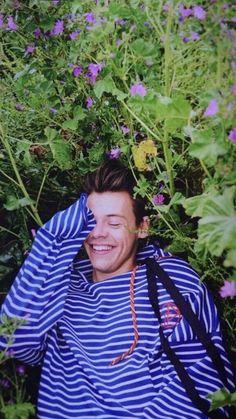 Harry Styles ❥ ( Another Man Magazine )