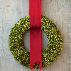 preserved boxwood wreath with red ribbon for hanging - Olive & Cocoa