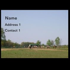 Horses in Nature Business Card by janislil