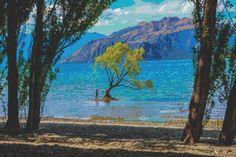 Lake Wanaka New Zealand Cross Stitch Pattern by Mydreamsofavalon, $6.00