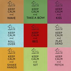 Keep Calm Dog Tricks I Go To Work, Dog Hacks, Dog Training Tips, All Dogs, Puppy Love, Keep Calm, Ms, Children, Dogs