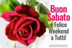 CDB CARTOLINE Compleanno per Tutti i Gusti! : Cartolina Buon Sabato e Felice Weekend a Tutti! Co...