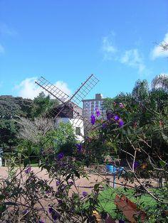 Parque Moinhos de Vento: Porto Alegre - RS, via Flickr.