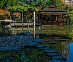 Japanese Hill-and-Pond Garden Brooklyn Botanic Garden