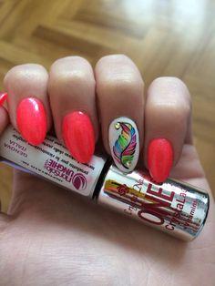 Nail art easy for the summer #nails #nailart #feather #tartofraises