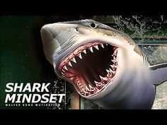 SHARK MINDSET | One of the Best Speeches Ever by Walter Bond - YouTube