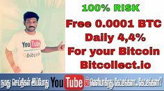 Free 0.0001 BTC & Daily 4,4% For your Bitcoin -Bitcollect.io