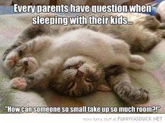 Parents Will Understand