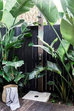 A coastal weatherboard home in Byron Bay An outdoor shower surrounded by palms creates a resort feel in the backyard of this Byron Bay home. Outdoor Baths, Outdoor Bathrooms, Outdoor Fun, Outdoor Spaces, Outdoor Living, Outdoor Kitchens, Outdoor Decor, Outdoor Cinema, Outdoor Seating