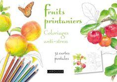fruits de saison Coloriages anti-stress 32 cartes postales | Editions Larousse