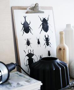 beetle print by RK designs.