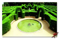Cool Garden Maze Entrance!
