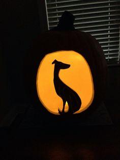 Halloween greyhound pumpkin. Happy Halloween everybody!