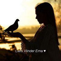 Vrij zijn als een vogel by Erna Vlinder on SoundCloud