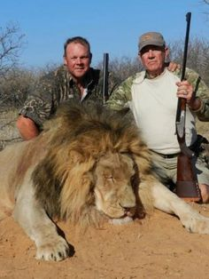 "Toy Story star (voice of little soldier Sarge) proudly poses with big game he has shot.  Canned Hunting is a huge issue in South Africa. Most customers come from the US looking for trophies and ""fun"".   http://www.mirror.co.uk/news/world-news/r-lee-ermeys-lion-kill-2999451#ixzz2uik568Zm"