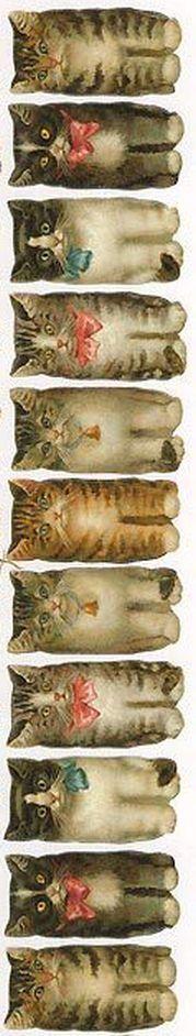 Vintage Victorian Cat Scraps