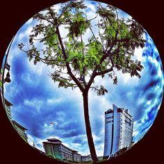 Photo by sheycaviteno #IGersManila #9pmhabit #IGShootingModes #PhotoPick #IGersPhilippines