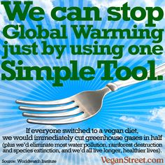 We can stop global warming just by using one simple tool.