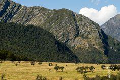 Matukituki Valley, Mt Aspiring National Park, Southern Alps, New Zealand