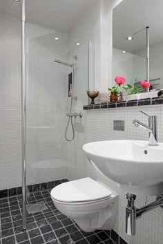 Stilfullt avskärmad duschhörna & vägghängd wc