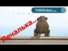 Печалька THWGlobal  25/11 (Алексей Барышев)
