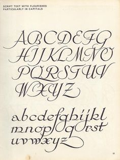 vintage script alphabet ~ Script Lettering M. Meijer ~ script text with flourishes, particularly in capitals Script Alphabet, Calligraphy Fonts Alphabet, Tattoo Lettering Fonts, Hand Lettering Alphabet, Doodle Lettering, Creative Lettering, Graffiti Lettering, Penmanship, Typography