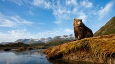 what to see, what to skip in Alaska