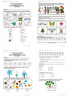 Materiale didactice de 10(zece): Teste de evaluare inițială C.L.R. și M.E.M. - clas...