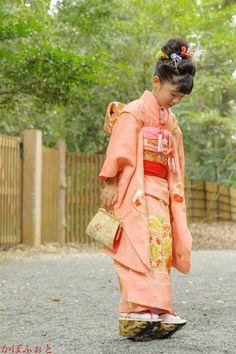 七五三の写真撮影 @渋谷区・明治神宮 : 「かぼふぉと」撮影ブログ Japanese Outfits, Japanese Fashion, Geisha, Kid Poses, Kimono Fabric, Silk Brocade, Yukata, Japanese Kimono, Single Women