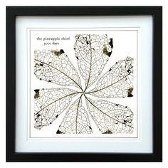 The Pineapple Thief | 3000 Days Album | ArtRockStore