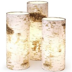 Birch lamps by Nicolette Brunklaus