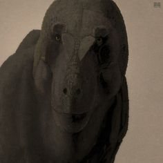Tyrannosaurus rex. John Conway