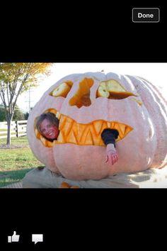 Atlantic Giant pumpkin Giant Pumpkin, Furnitures, Pumpkins, Bean Bag Chair, Boats, Outdoors, Halloween, Garden, Home Decor