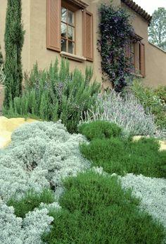 Gartengestaltung Ideen Heiligenkraut Italienischer Stil