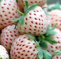Te presentamos a las curiosas Fresas blancas