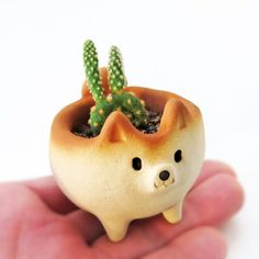 archiemcphee:  Because sometimes what you need most is a ceramic Shiba Inu especially one that can double as a planter or a dish or even a pencil holder.  These kawaii canines are made by Japanese artist Tetsuya Iseda of the Sirosfunnyanimals Etsy shop.  But wait Iseda makes lots of cute kitty cats too!  [via Incredible Things]