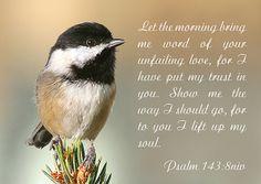 Psalm 143:8 niv, via Flickr.