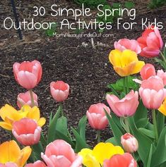 30 Simple Spring Out