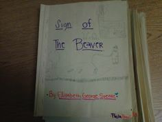 Fearless in 5th: novel study on Sign of the Beaver- has rubrics and lesson ideas for class novel study