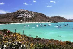 Langebaan lifestyle - a Water Lover's Guide To the Lagoon - Langebaan may be the only seaside holiday town in South Africa where visitors get excited when the afternoon winds pick up. African Holidays, Provinces Of South Africa, Cape Town, West Coast, Places To See, Beautiful Places, National Parks, Scenery, Vacation